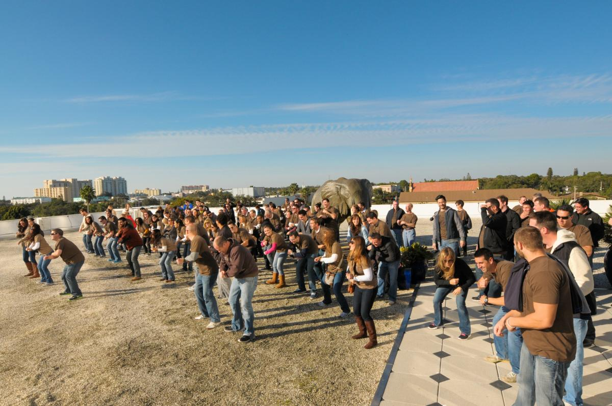 The S-One flash mob practices on the roof.